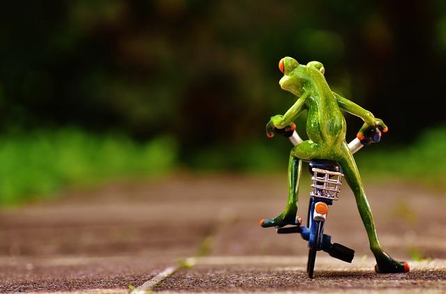自転車情報サイト始めました